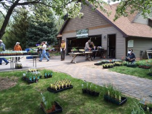 Wild Ones Fox Valley Area chapter memmbers sorting plants for their 2015 Plant Sale. The plant sale is held at the WILD Center. Photo by Rich Fischer.