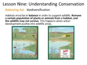 This is one of the slides from my PPT presentation for our local Hunter Education class. It's a simply graphic, but it shows why landscape-scale mitigation is so important. Photo courtesy of WDNR