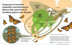 Map courtesy of Monarch Joint Venture. Click on graphic to read their news article on the proportion of monarch butterflies that came from six breeding regions overwintering in Mexico.