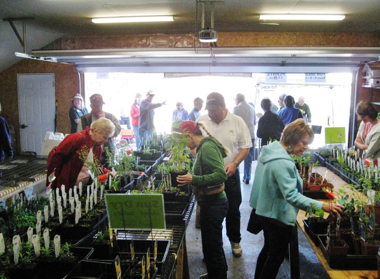 Shoppers looking for native plants to take home for spring planting.