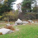 The local rock is mostly granite and is so ubiquitous, they're sometimes called the Connecticut State Flower.